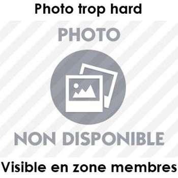 Plan pour un délire sexuel à Saint-Denis